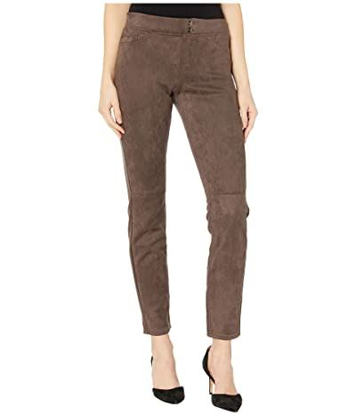 HUE Microsuede Straight Leg Leggings (Espresso) Women