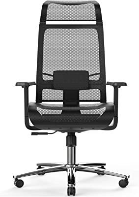 BILKOH Ergonomic Office Chair, High Back Desk Chair with Mesh Seat - Adjustable Lumbar Support Breathable Mesh Chair Wide Headrest& Reclining Task Chair Adjustable 3D Armrest & Height Computer Chairs