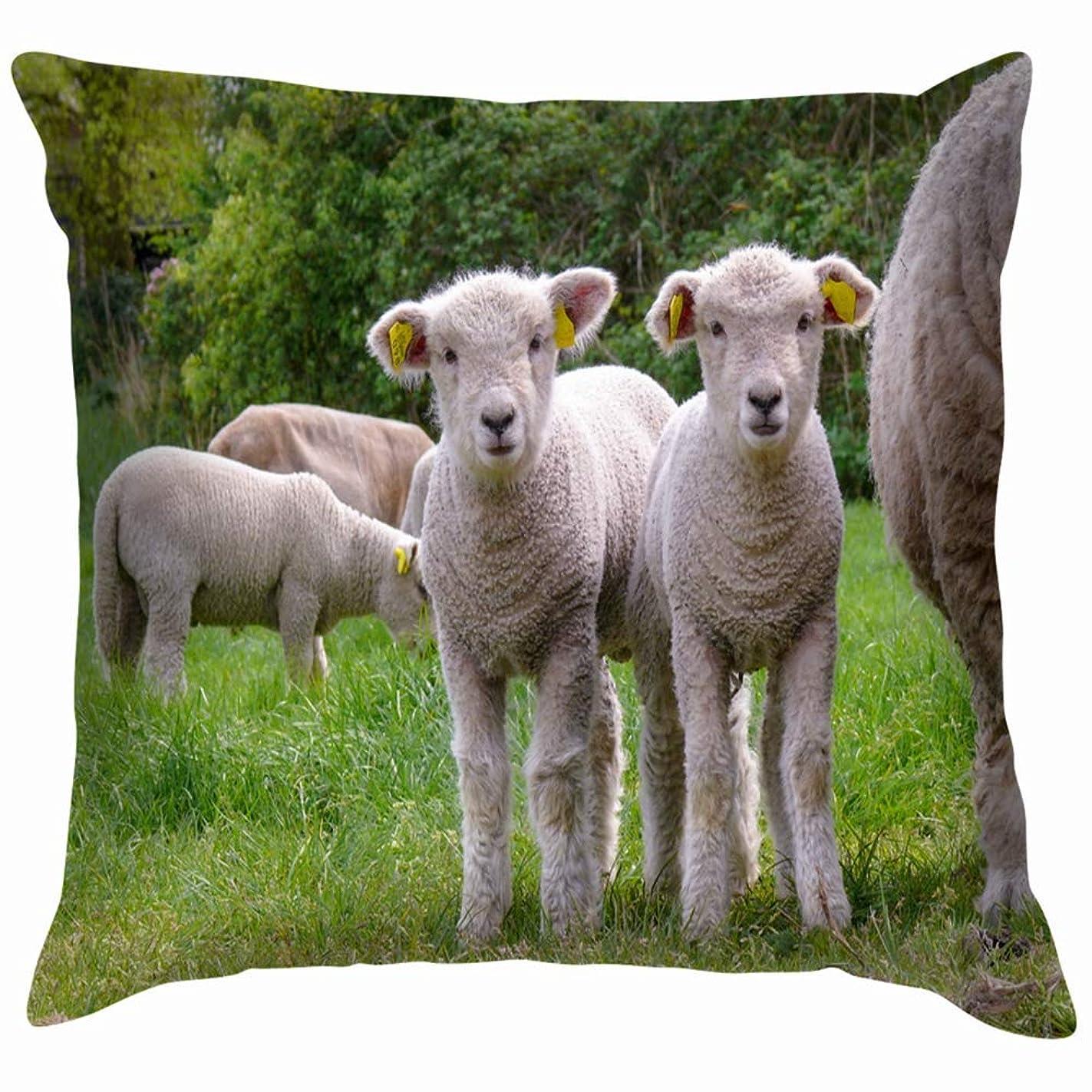 追記真実不規則な2匹のかわいい子羊が隣に立っています動物野生動物羊公園屋外投げ枕カバーホームソファクッションカバー枕カバーギフト45x45 cm
