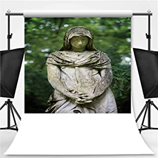 Old Angel Statue Photography Backdrop,180599 for Video Photography,Flannelette:6x10ft