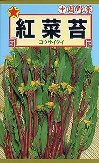 株式会社トーホク 紅菜苔 01895