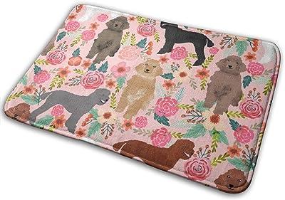 "Poodles Florals Cute Poodle Best Poodle Design Cute Dog Florals Poodles_25654 Doormat Entrance Mat Floor Mat Rug Indoor/Outdoor/Front Door/Bathroom Mats Rubber Non Slip 23.6"" X 15.8"""