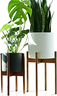 Fox & Fern Tall Plant Stand Acacia - EXCLUDING 10