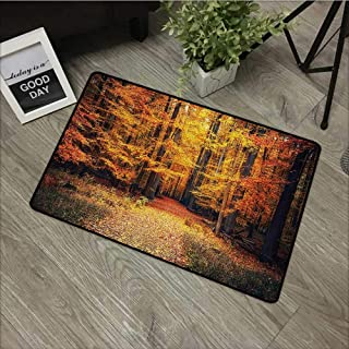 Moses Whitehead Bathroom Entry Rugs Forest,Magical Fall Photo in National Park with Vivid Leaf Plant Eco Earth Mystical Theme,Orange Brown,for Indoor/Outdoor/Front Door/Shower Bathroom 35