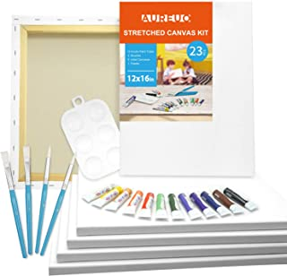 AUREUO Acrylic Painting Set Include 6 Pack 12x16 Inch Stretched Canvas, 12x12ml Acrylic Paints, 4 Paint Brushes & 1 Palett...