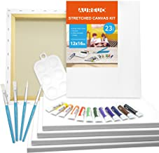 AUREUO 23-Piece Canvas Painting Kit Include 6 Pack 12x16 Inch Stretched Canvas, 12x12ml Acrylic Paints, 4 Paint Brushes, 1...