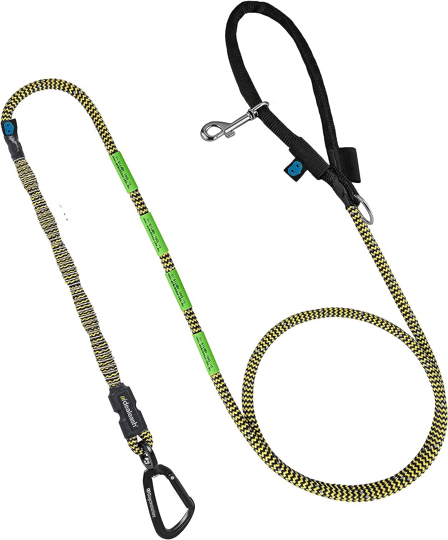 Heavy Duty Dog Leash - Cheap SALE Start Absorb for Shock Genuine Free Shipping Training
