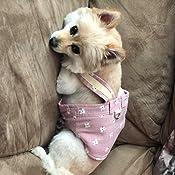 chaleco ajustable para caminar para mascotas peque/ño perro y gato grande arn/és frontal de malla transpirable para cachorros Rantow Arn/és reflectante para perro peque/ño juego de correa