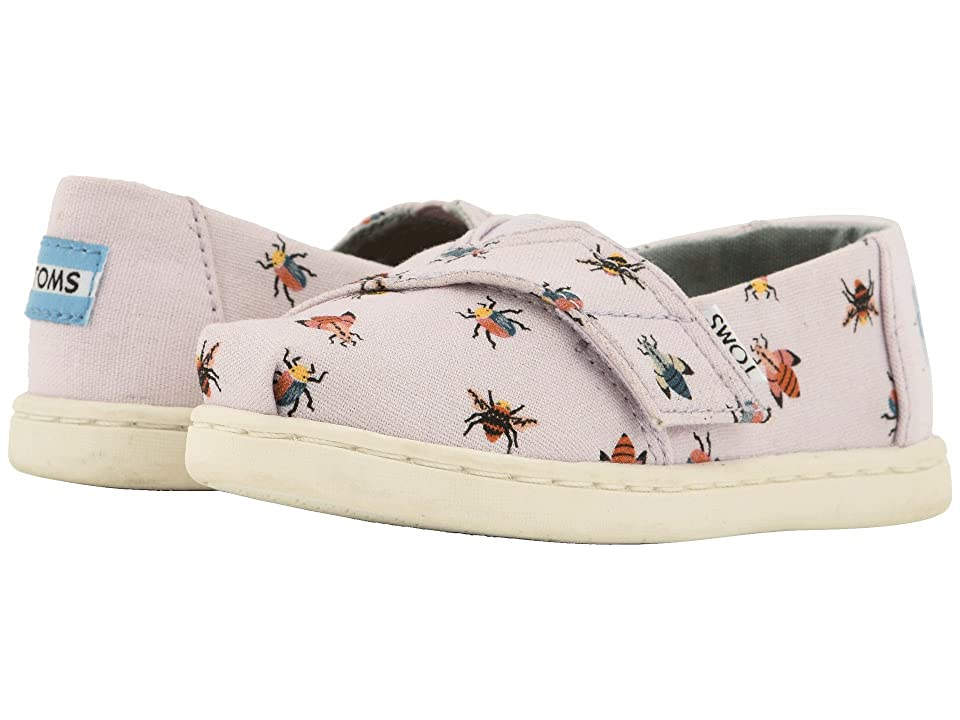 TOMS Kids Alpargata (Infant/Toddler/Little Kid) (Lavender Bugs) Girl