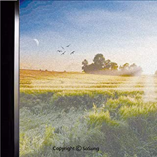 12x18 inch Window Privacy Film,Photo of the Meadows in Wind Morning with Moon and Sky Landcape Pastoral Deco Home Decorative Non-Adhesive Static Cling Frosted Window Film,Window Stickers for Kids Home