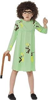 Roald Dahl Mrs. Twit Costume Green With Dress Wig Eyebrow & Walkingstick