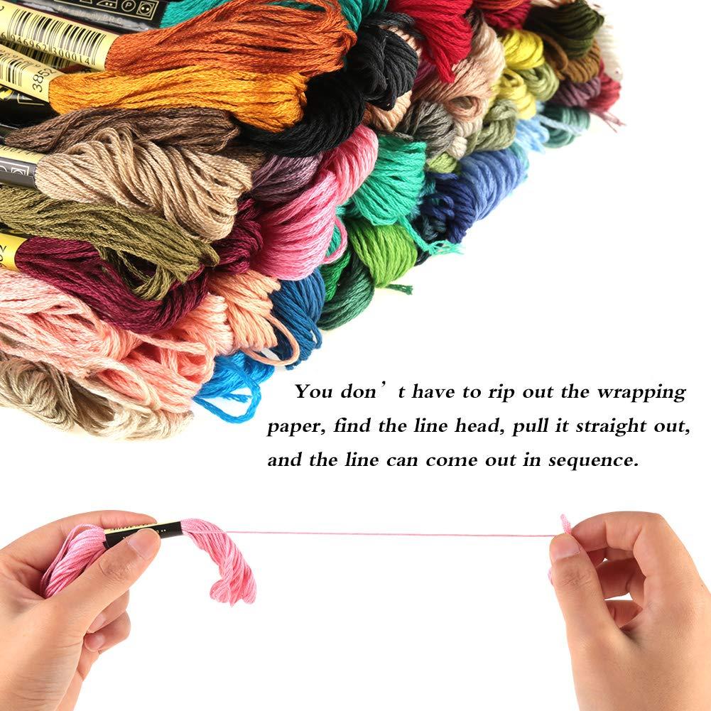 Meifyomng Hilo de Bordar, 100 madejas de algodón Trenzado, Color ...