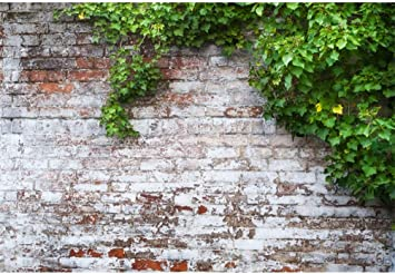 Leowefowa 12X8FT Old Church Countyard Backdrop Weathered Arch Door Green Leaves Vine Shabby Brick Wall European Archiclture Backdrops for Photography Lover Adults Vinyl Photo Background Studio Props