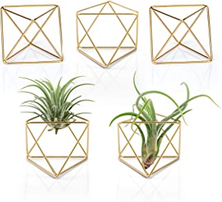 Mkono Air Plant Holder, Modern Geometric Planter Tillandsia Container, 2.6