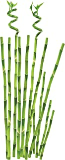Roommates Bamboo Peel & Stick Wall Decal, Multi-Colour, RMK1166GM