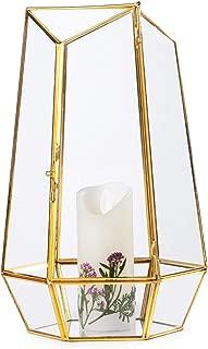 NCYP Brass Glass Irregular Hanging Tall Geometric Terrarium Container with Door Desktop Planter Candle Holder Lamp for Succulent Fern Moss Air Plants Holder Miniature Outdoor Fairy Garden Gift