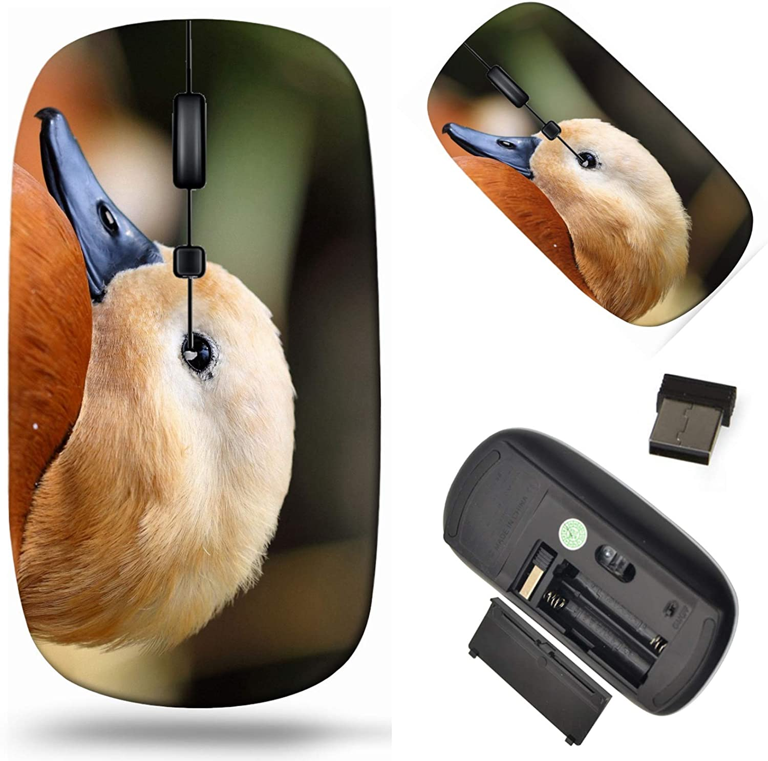 Wireless Computer Mouse 2.4G Mesa Mall with Recommended USB Receiver Laptop Cor
