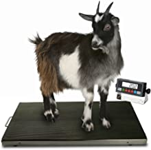 """Prime Scales 