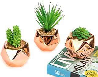 Nattol Small Artificial Succulent Plant in Rose Gold Geometric Plant Pots, Fake Cactus in Gold Ceramic Pot for Home Décor, Set of 3
