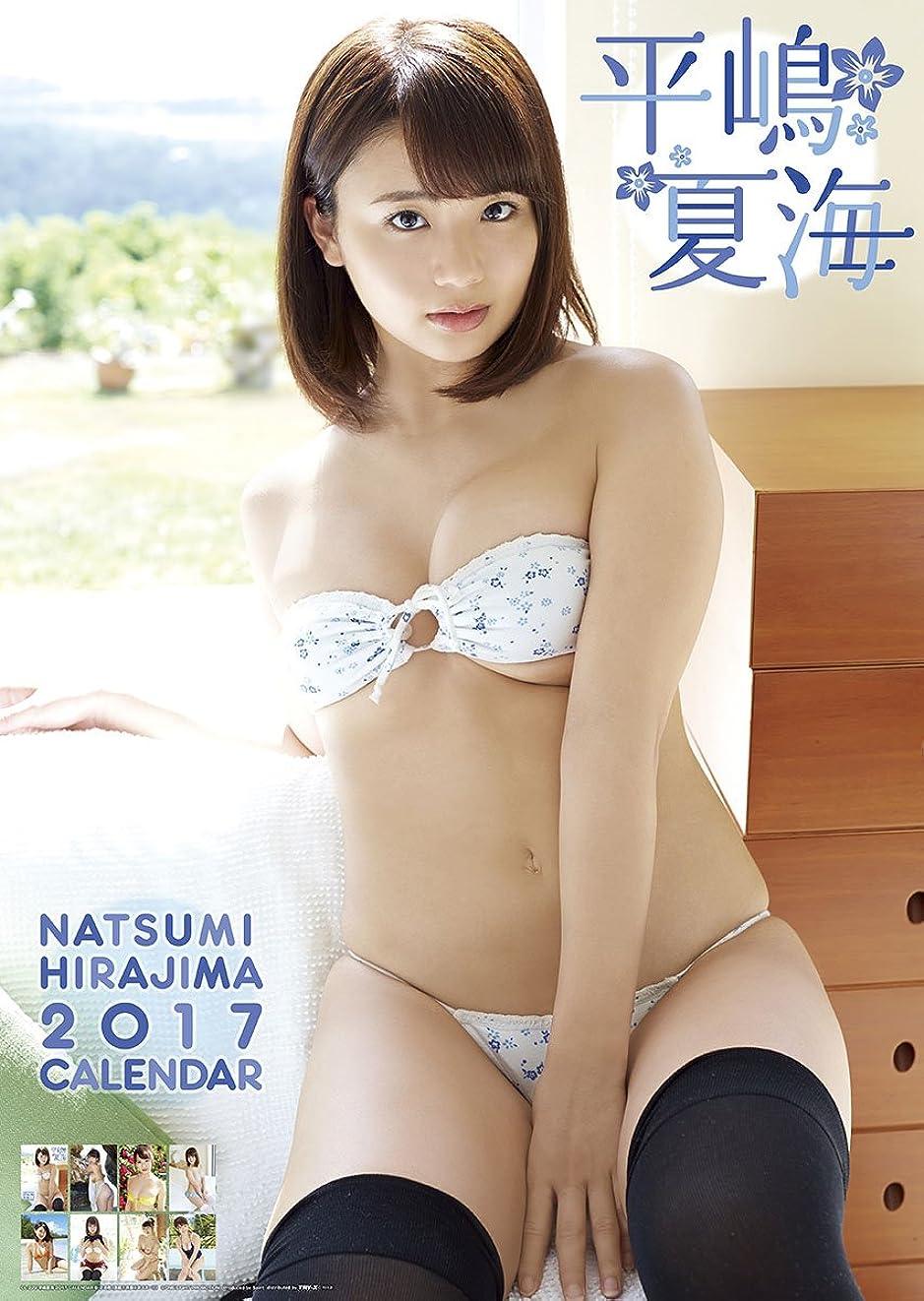 同性愛者政権たぶん平嶋夏海 2017年 カレンダー 壁掛け B2 CL-229