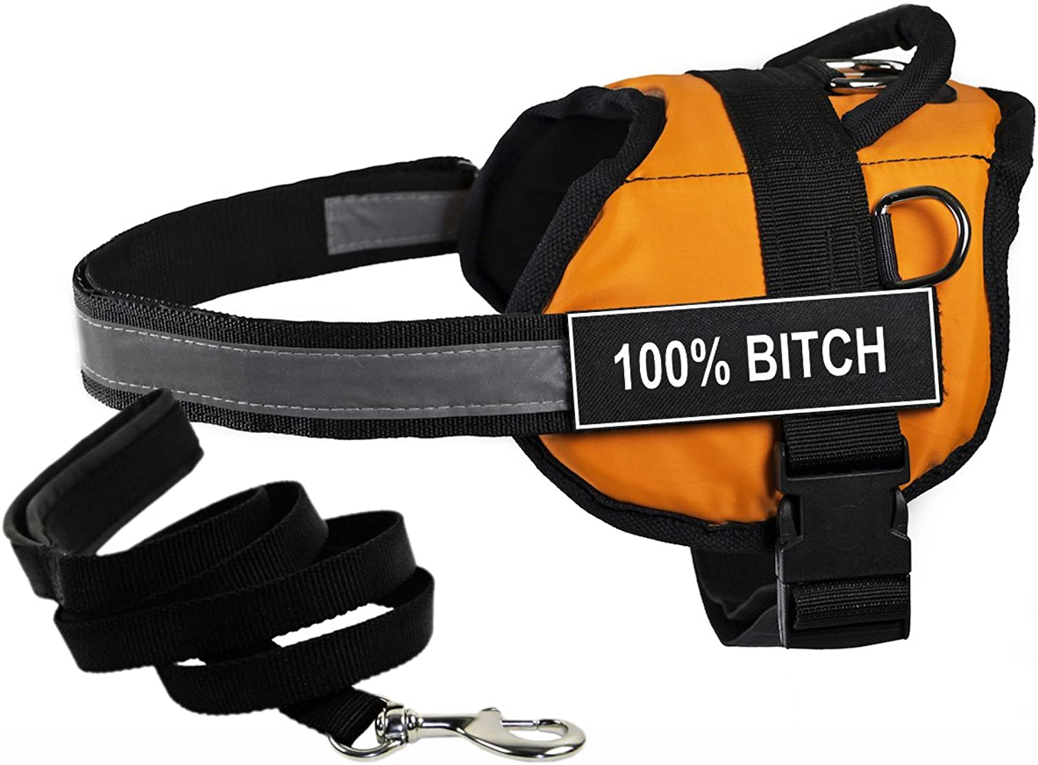 Dean & Tyler's DT Works orange 100% BITCH Harness with Chest Padding, XSmall, and Black 6 ft Padded Puppy Leash.