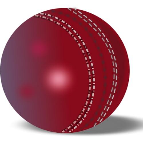 Cricket Livescore Widget
