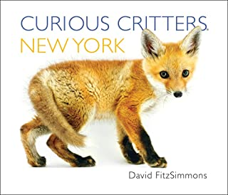 Curious Critters New York (Curious Critters Board Books)