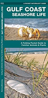 Gulf Coast Seashore Life: A Folding Pocket Guide to Familiar Animals and Plants (Wildlife and Nature Identification)