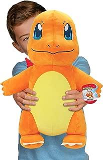Pokémon 24