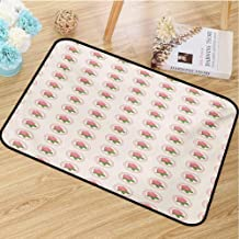 hengshu Floral Inlet Outdoor Door mat Country Farmhouse Theme with Rose Blooms and Leaves in Frames Image Catch dust Snow and mud W31.5 x L47.2 Inch Pale Pink White and Green