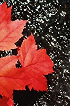 2019 Daily Planner Red Maple Leaves Autumn Season 384 Pages: (Notebook, Diary, Blank Book) (2019 Planners Calendars Organizers Datebooks Appointment Books Agendas)