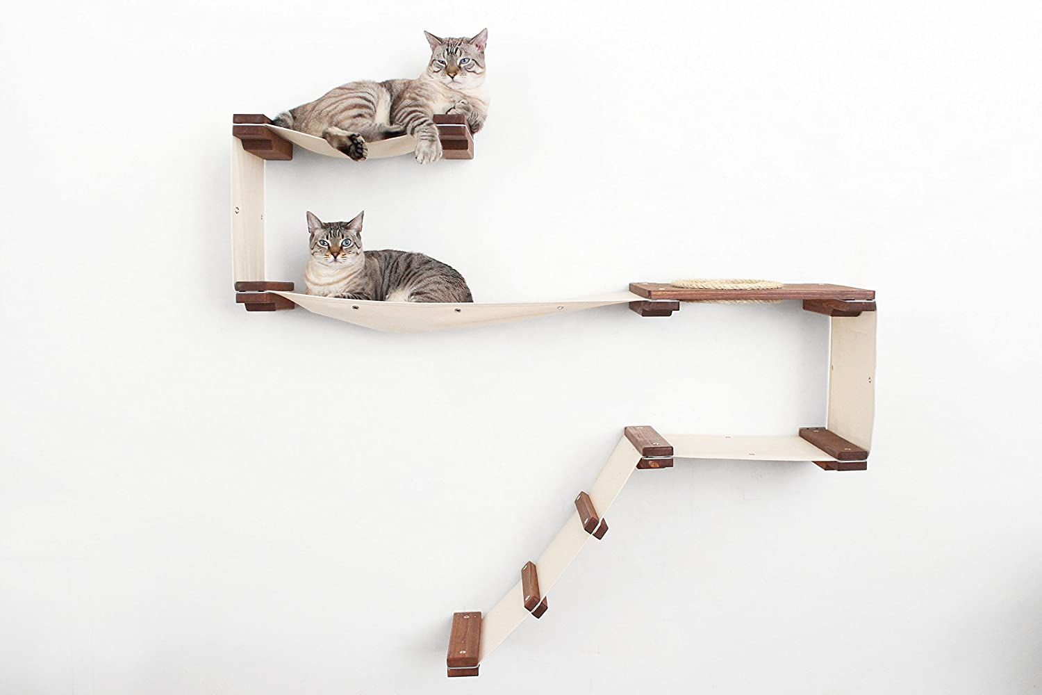 CatastrophiCreations Cat Mod Play Handcrafted Wallmounted Activity Cat Tree Shelves  Onyx Natural