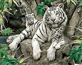 Painting by Numbers DIY Oil Painting for Adult Animals White Tiger Canvas Print Wall Art Decoration 40X50Cm