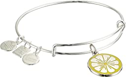Charity by Design Zest for Life II Charm Bangle