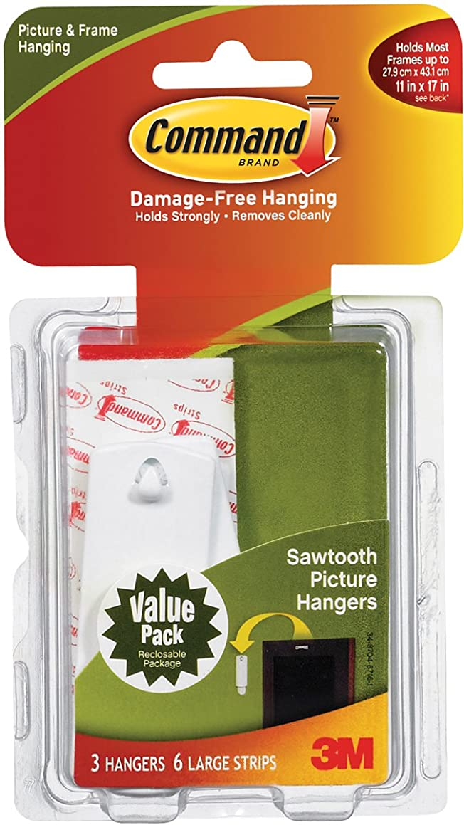 3M Company #17042 Saw Tooth Hanger Pack