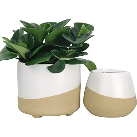 Sandy Pink Ceramic Planter with white lines