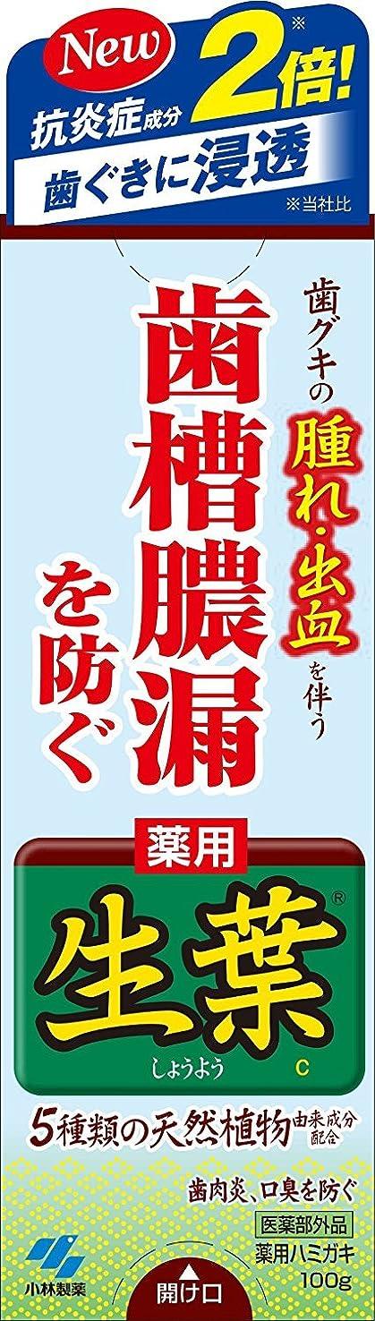 パントリー贅沢促進する生葉(しょうよう) 100g【7本セット】