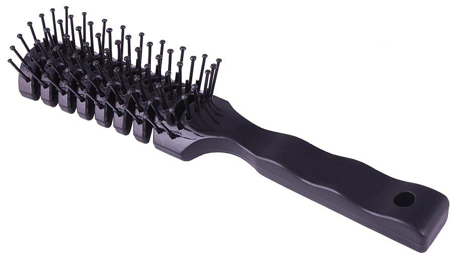 名前を作る不注意ネックレス散髪用スケルトンブラシ、サロンブロードライブラシ 静電気防止 二本入り