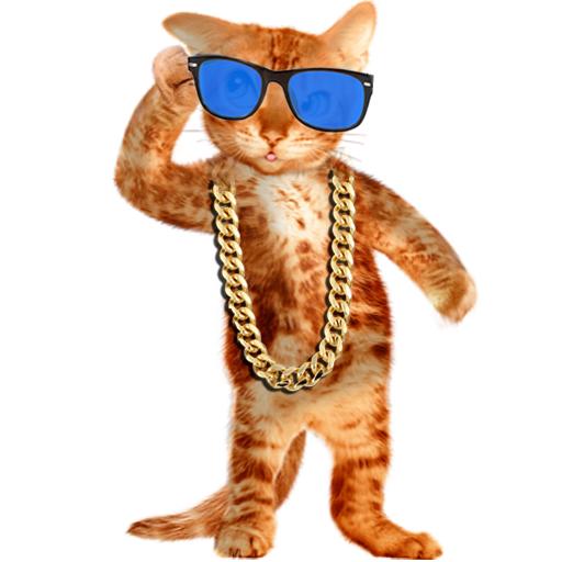 Reale gatto parlante