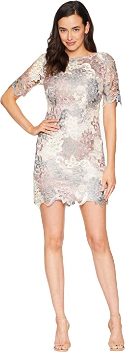 Petite Short Sleeve Multicolor Chemical Lace Sheath