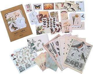 36PCS Decoration Laptop Stickers, Doraking DIY Nature Sticker Decals for Windows, Glasses, Scrapbooking, Gift Wrap (Natura...