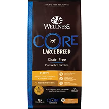Wellness Core Natural Grain Free Dry Dog Food Large Breed Puppy