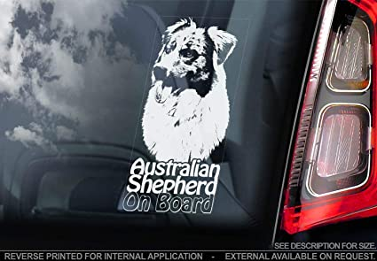 Sticker International Australian Shepherd Autoaufkleber Hund Schild Fenster Stoßstange Aufkleber Geschenk V004 Weiß Klar Externe Außen Aufdruck 220x100mm Küche Haushalt