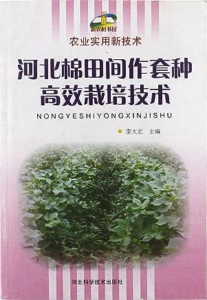 农业实用新技术:河北棉田间作套种高效栽培技术