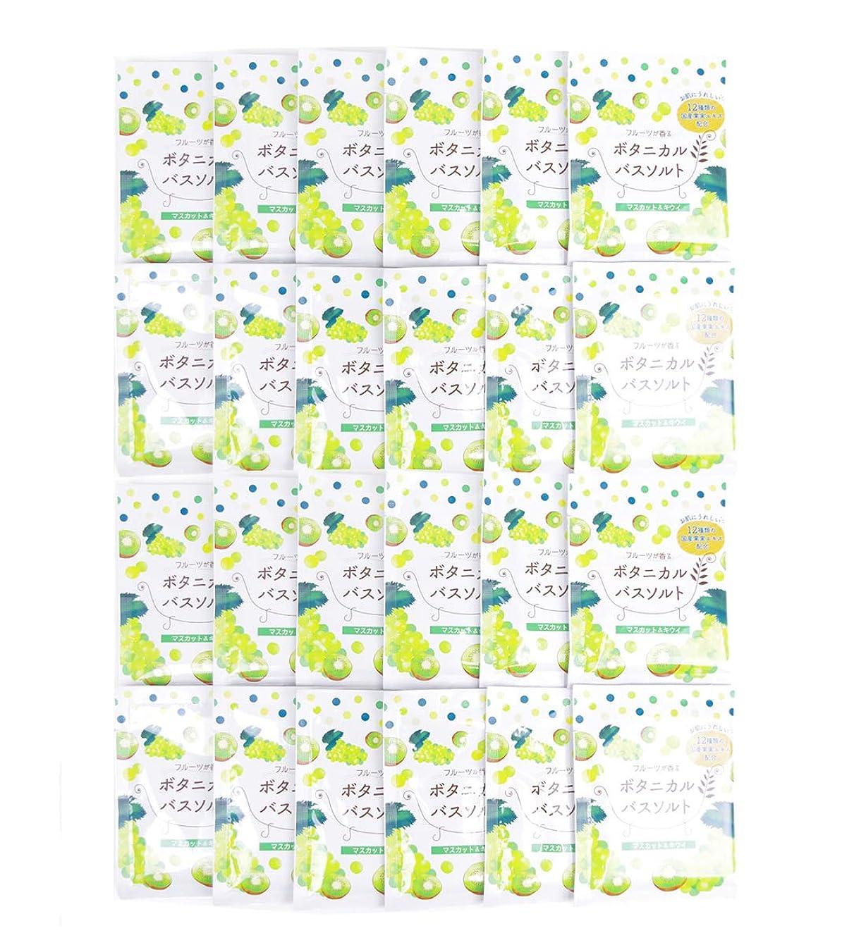 移動遮るジャンル松田医薬品 フルーツが香るボタニカルバスソルト マスカット&キウイ 30g 24個セット