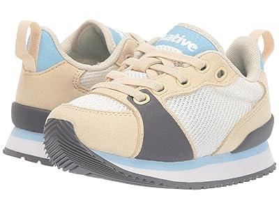 Native Kids Shoes Dartmouth (Toddler/Little Kid) (Bone White/Shell White/Sky Blue/Dublin Rubber) Kid