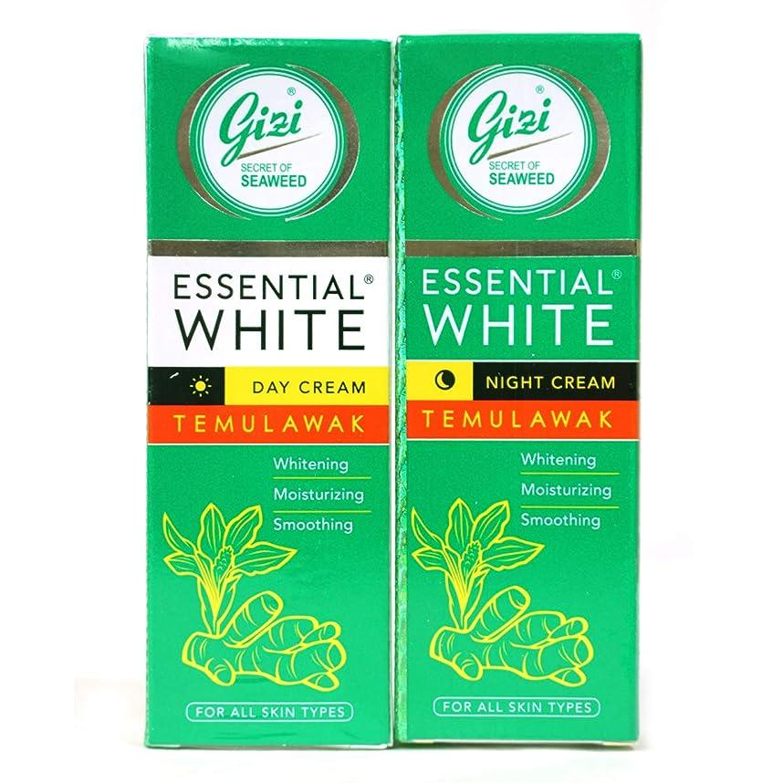 分析的なバルーンワゴンギジ gizi Essential White フェイスクリーム チューブタイプ 日中用&ナイト用セット 18g ×2個 テムラワク ウコン など天然成分配合 [海外直送品]