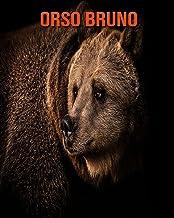 Orso bruno: Fantastici fatti e immagini (Italian Edition)