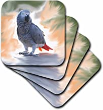3dRose African Grey Parrot Coaster, Soft, Set of 4