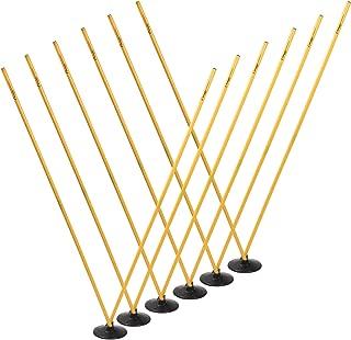 Champion Sports Pro Agility Pole Set
